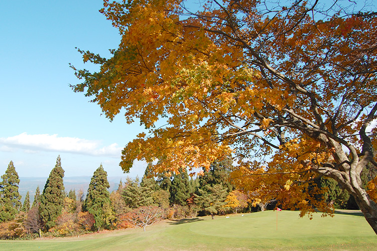 將津輕平原盡收眼底,欣賞阿闍羅山的楓紅景色