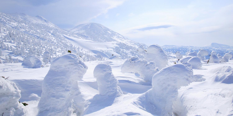 樹冰(Snow Monster)